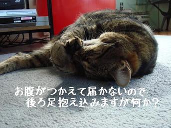 Photo_112