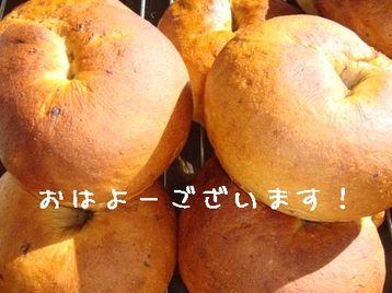 Photo_235