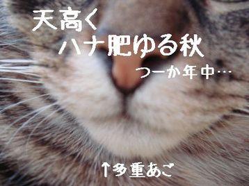 Photo_94